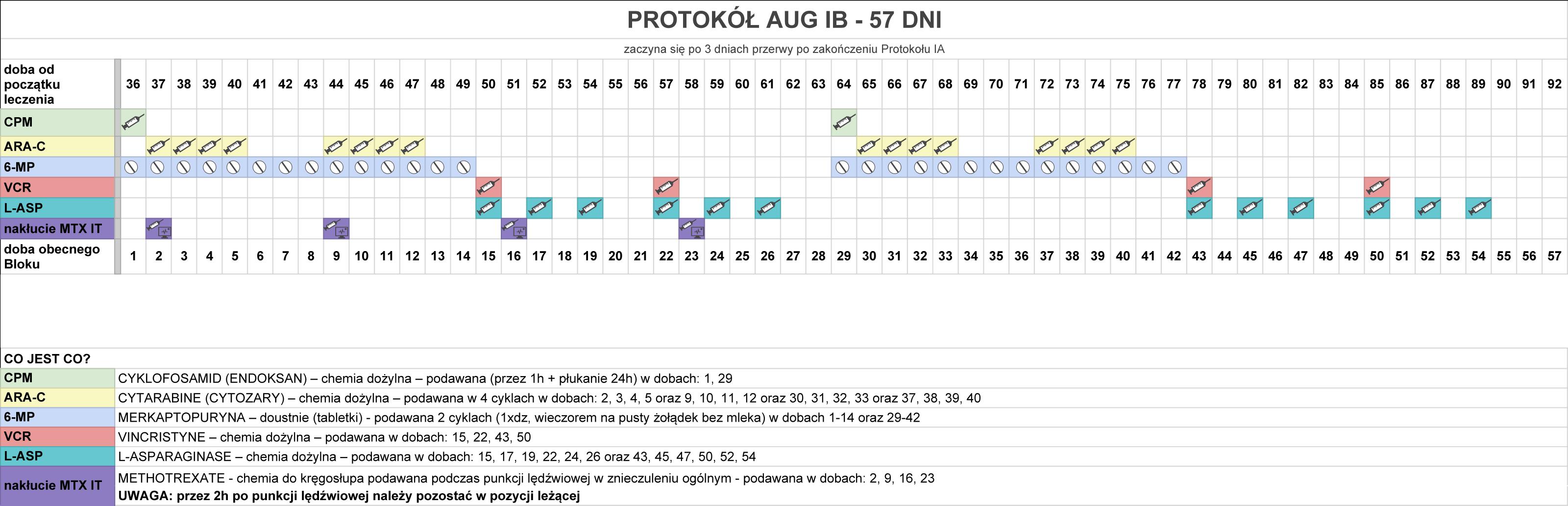 protokol-aug-ib