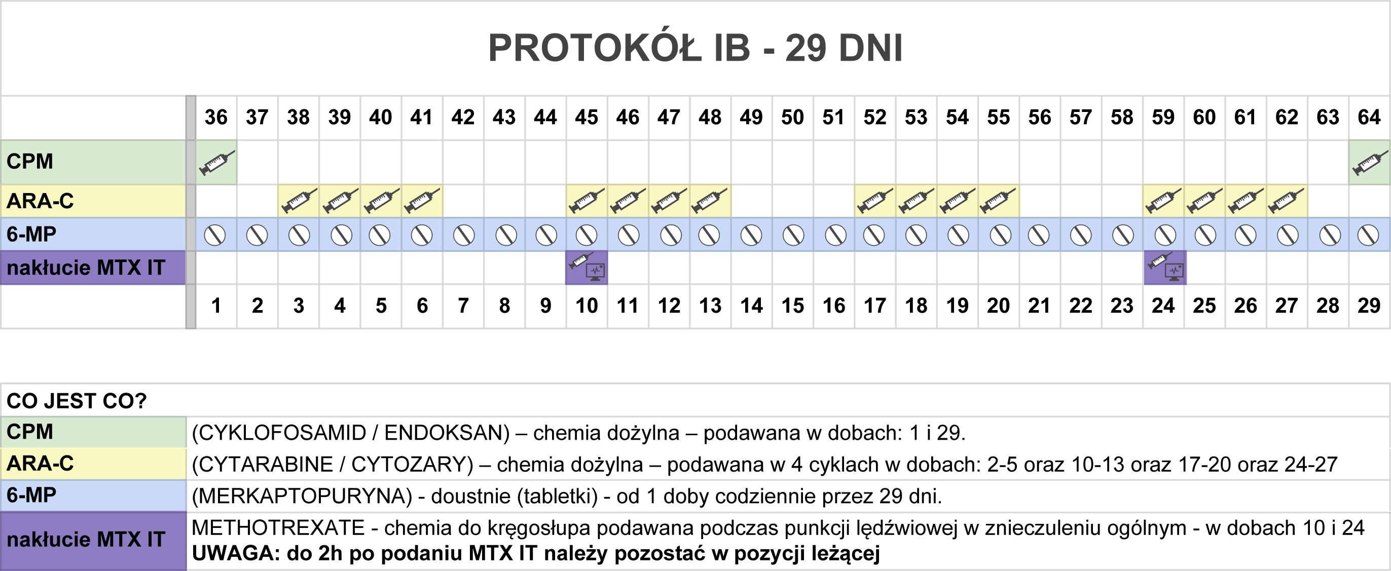 protokol-ib