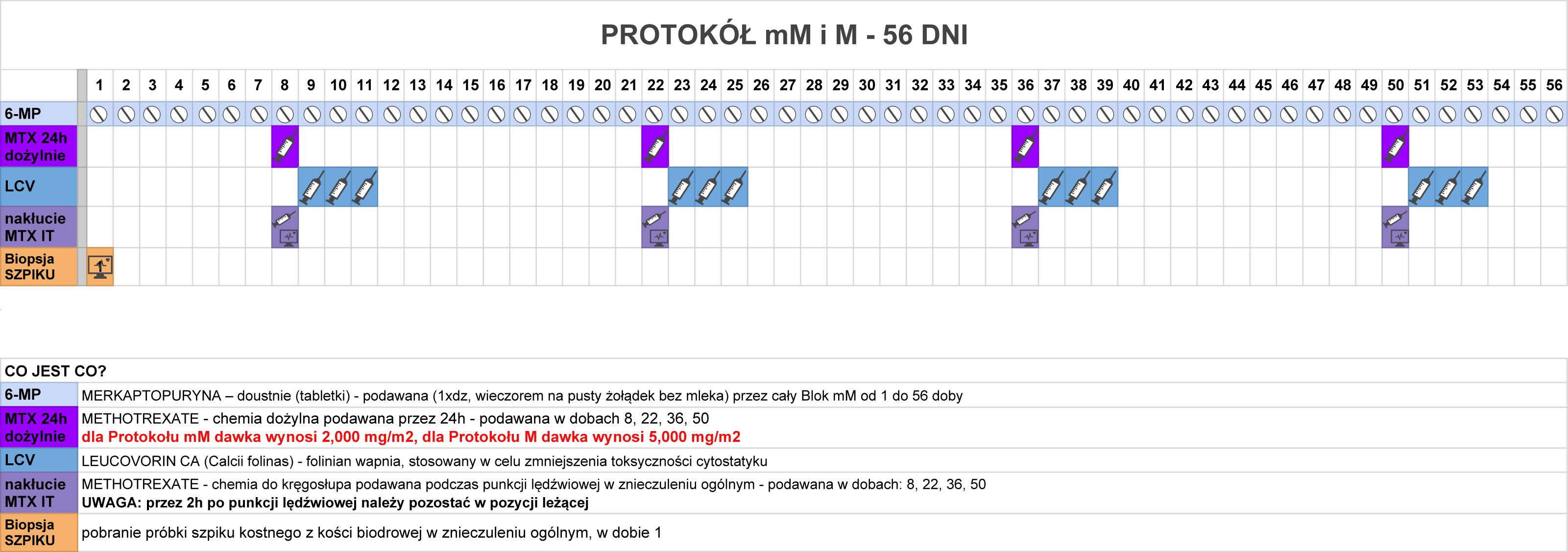 protokol-mm